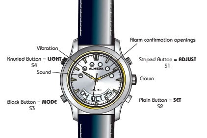 almeda watch diagram