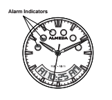 alarm indicators on alemda watch